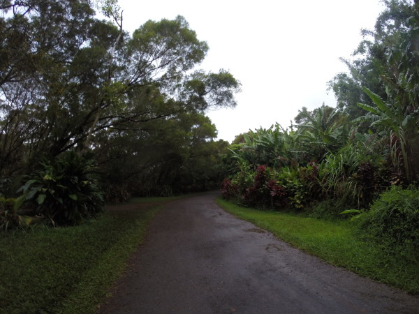 Twin Fallsへの道