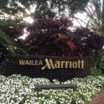 ハワイ旅行記2015 Vol.13 Wailea Beach Marriott Resort & Spa(ワイレアビーチマリオット・リゾートアンドスパ)