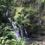 ハワイ旅行記2015 Vol.8 Road to Hana(ロード トゥー ハナ)前篇