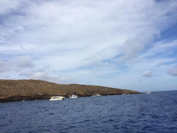 モロキニ島シュノーケリングのツアーボートがたくさん!