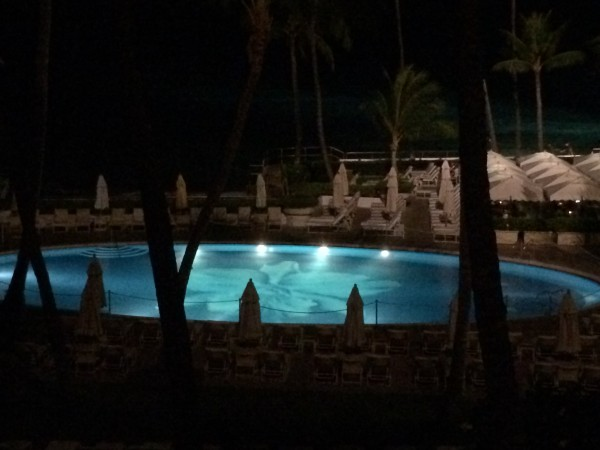 夜のオーキッド・プール
