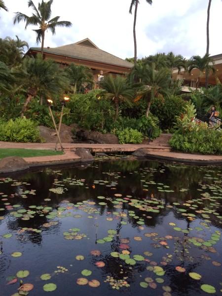 ワイレアビーチマリオット中庭