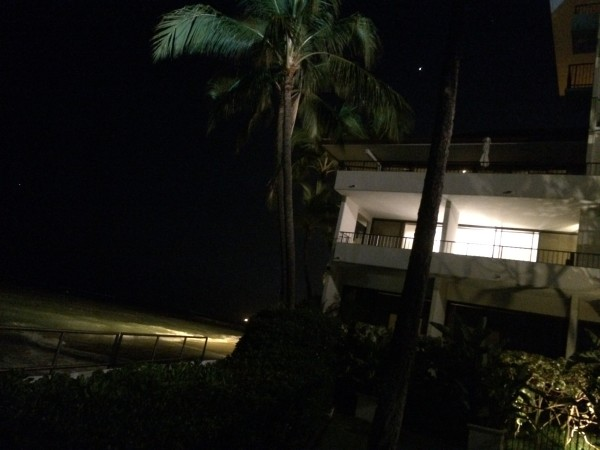 Orchids(オーキッズ)からの景色(夜)