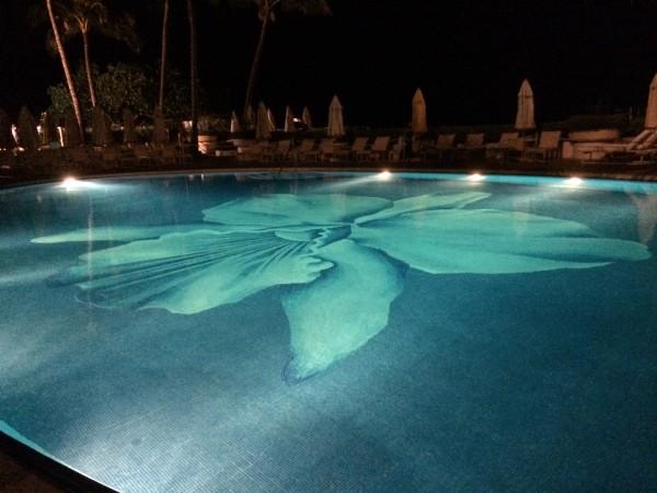 オーキッド・プールの夜景