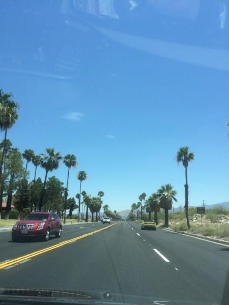 Palm Springs (10)