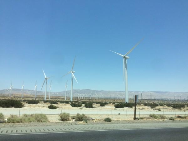 Palm Springs (11)