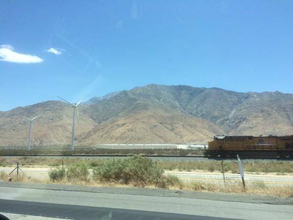 Palm Springs (3)