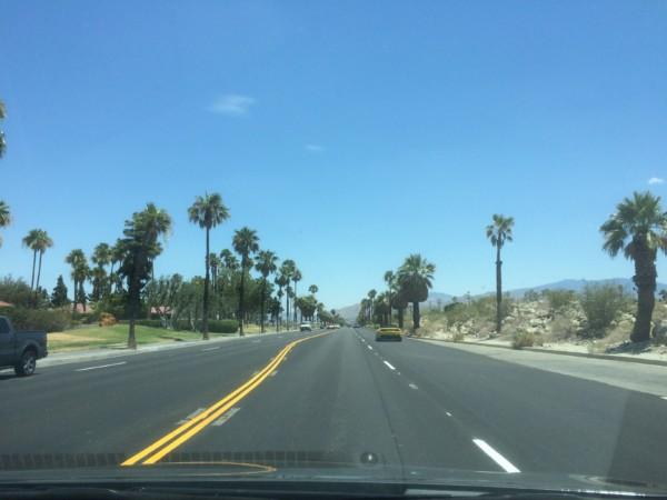 Palm Springs (9)