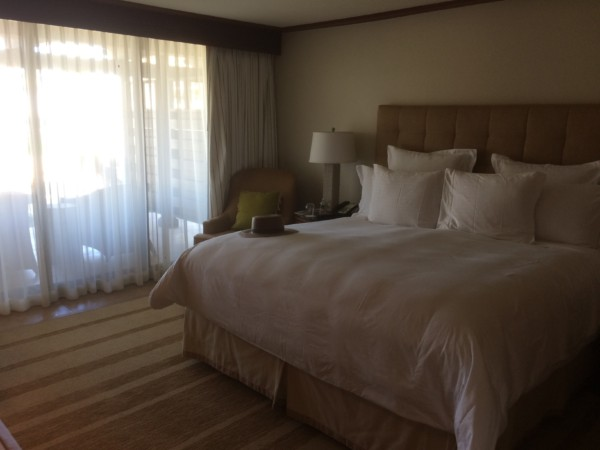 Ritz Carlton Rancho Mirage (10)