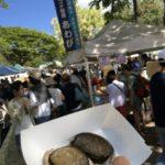ハワイ旅行記2017 Vol.10 – KCCファーマーズマーケットとラ二アケアビーチの海ガメ!