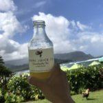 ハワイ旅行記2017-カウアイ編-Vol.9 – セント・レジス プリンスヴィルのプールとプライベートビーチ